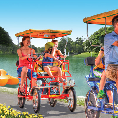 Surrey  pedal boat image